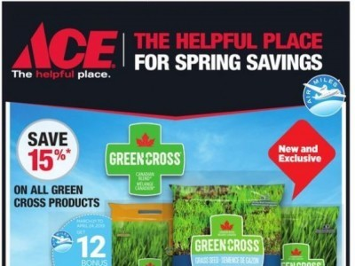 Ace Hardware Outdated Flyer Thumbnail