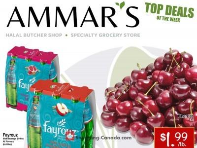 Ammar's Halal Meats Flyer Thumbnail