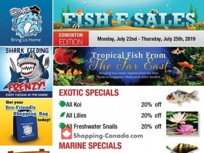 Big Al's Flyer Thumbnail