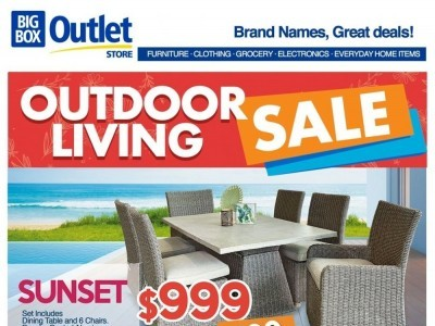 Big Box Outlet Store Outdated Flyer Thumbnail