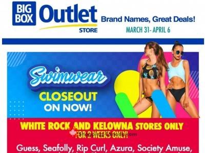 Big Box Outlet Store Flyer Thumbnail