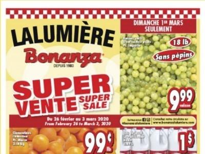 Bonanza Flyer Thumbnail