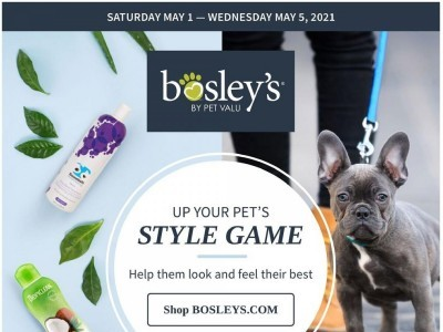 Bosley's Outdated Flyer Thumbnail