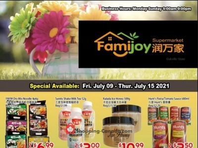 Famijoy Outdated Flyer Thumbnail