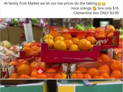 Family Fruit Market Flyer Thumbnail