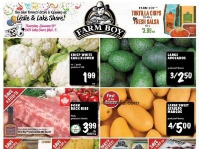 Farm Boy Flyer Thumbnail