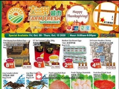 Farm Fresh Supermarkets Outdated Flyer Thumbnail