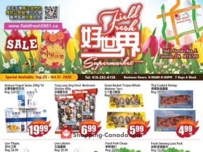 Field Fresh Supermarket Outdated Flyer Thumbnail