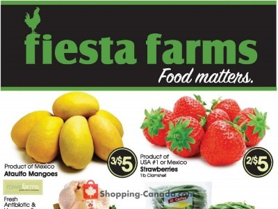 Fiesta Farms Flyer Thumbnail