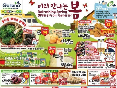 Galleria Supermarket Outdated Flyer Thumbnail