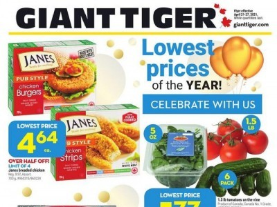 Giant Tiger Flyer Thumbnail