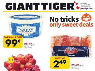 Giant Tiger Flyer Thumbnail