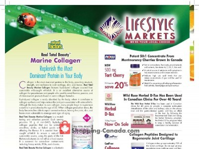Lifestyle Markets Flyer Thumbnail