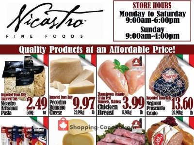 NICASTRO'S Italian Food Outdated Flyer Thumbnail