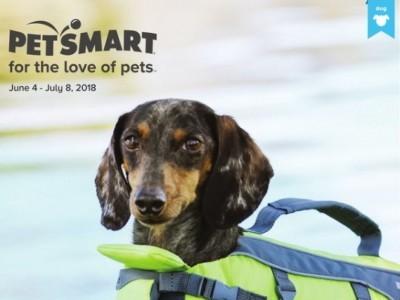 PetSmart Flyer Thumbnail