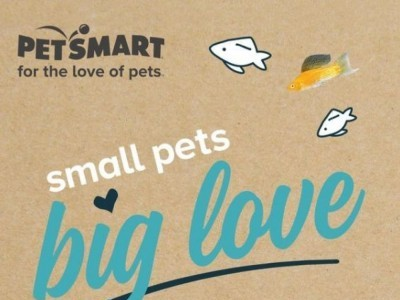 PetSmart Outdated Flyer Thumbnail