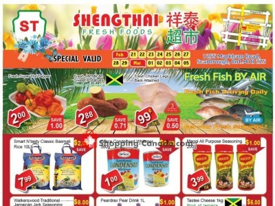 Shengthai Fresh Foods Outdated Flyer Thumbnail
