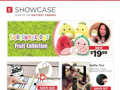 Showcase Flyer Thumbnail