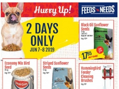 ShurGain Feeds'n Needs Outdated Flyer Thumbnail
