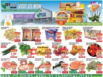 Skyland Food Mart Outdated Flyer Thumbnail