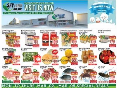 Skyland Food Mart Flyer Thumbnail