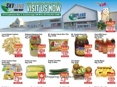 Skyland Food Mart Flyer Thumbnail