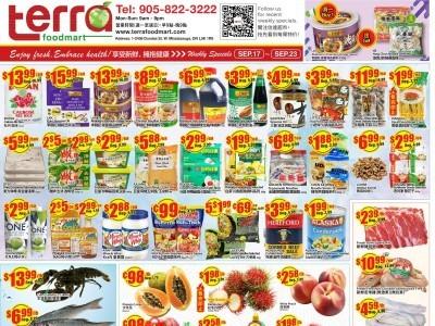 Terra Foodmart Flyer Thumbnail