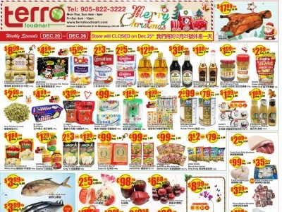 Terra Foodmart Outdated Flyer Thumbnail