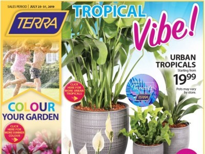 Terra Green Houses Outdated Flyer Thumbnail