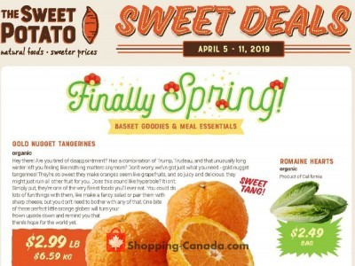 The Sweet Potato Outdated Flyer Thumbnail