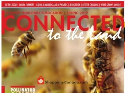 TSC Stores Flyer Thumbnail