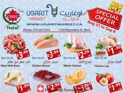 Ugarit Market Outdated Flyer Thumbnail