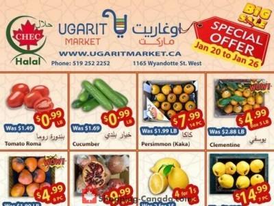 Ugarit Market Flyer Thumbnail