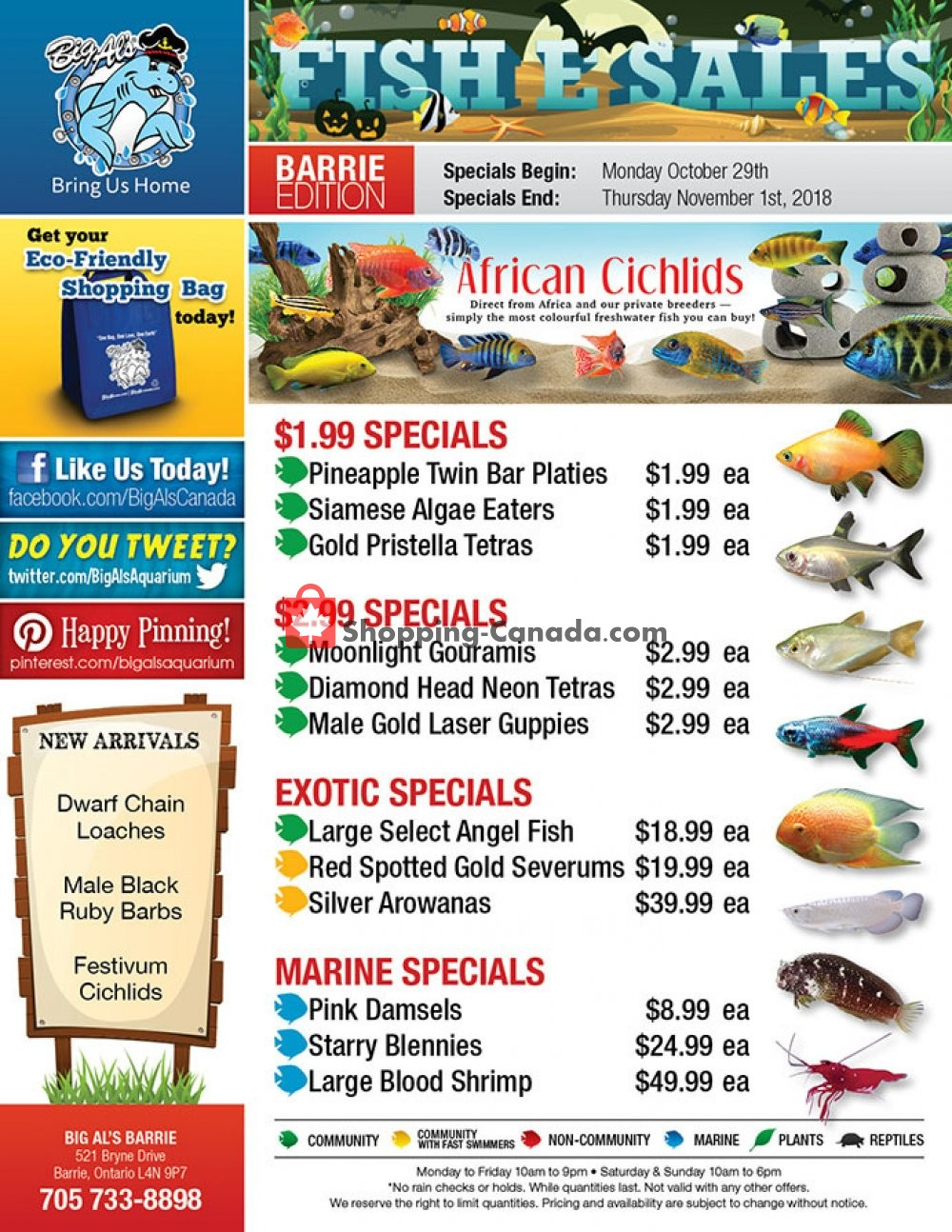 Flyer Big Al's Canada - from Monday October 29, 2018 to Thursday November 1, 2018