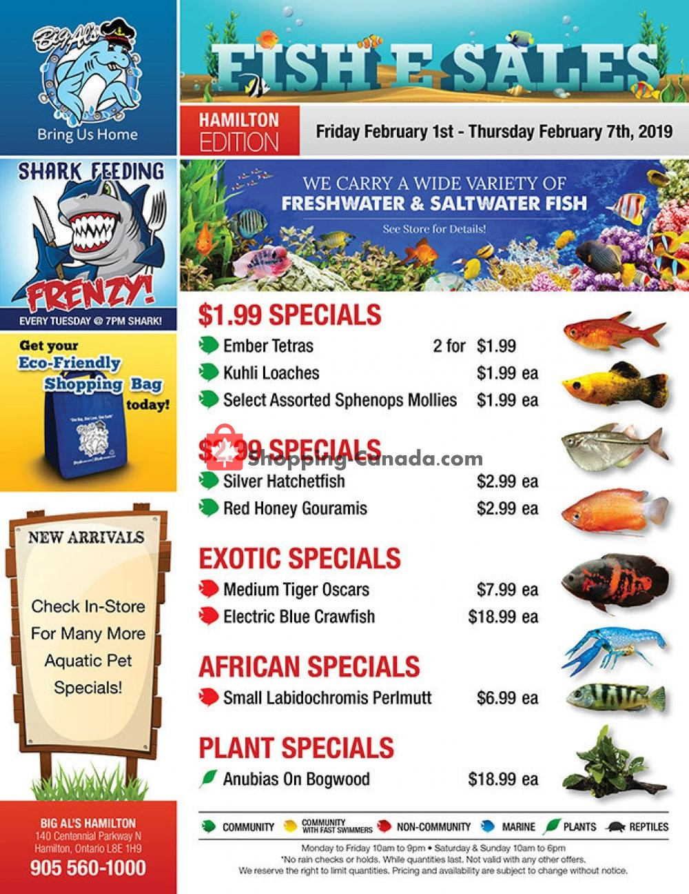 Flyer Big Al's Canada - from Friday February 1, 2019 to Thursday February 7, 2019