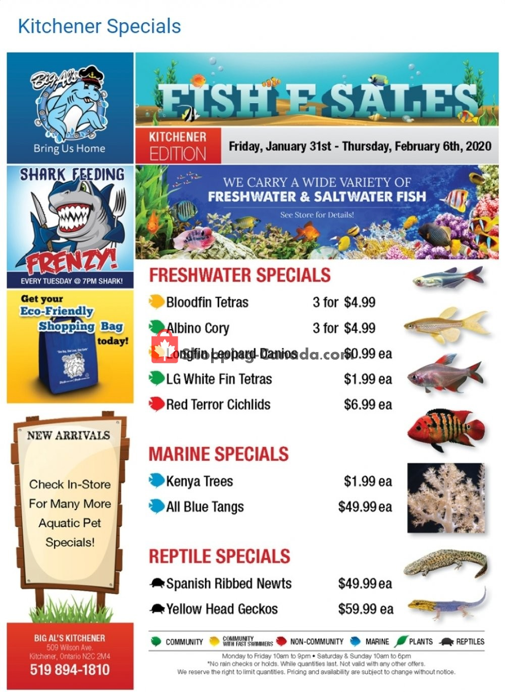 Flyer Big Al's Canada - from Friday January 31, 2020 to Friday March 6, 2020