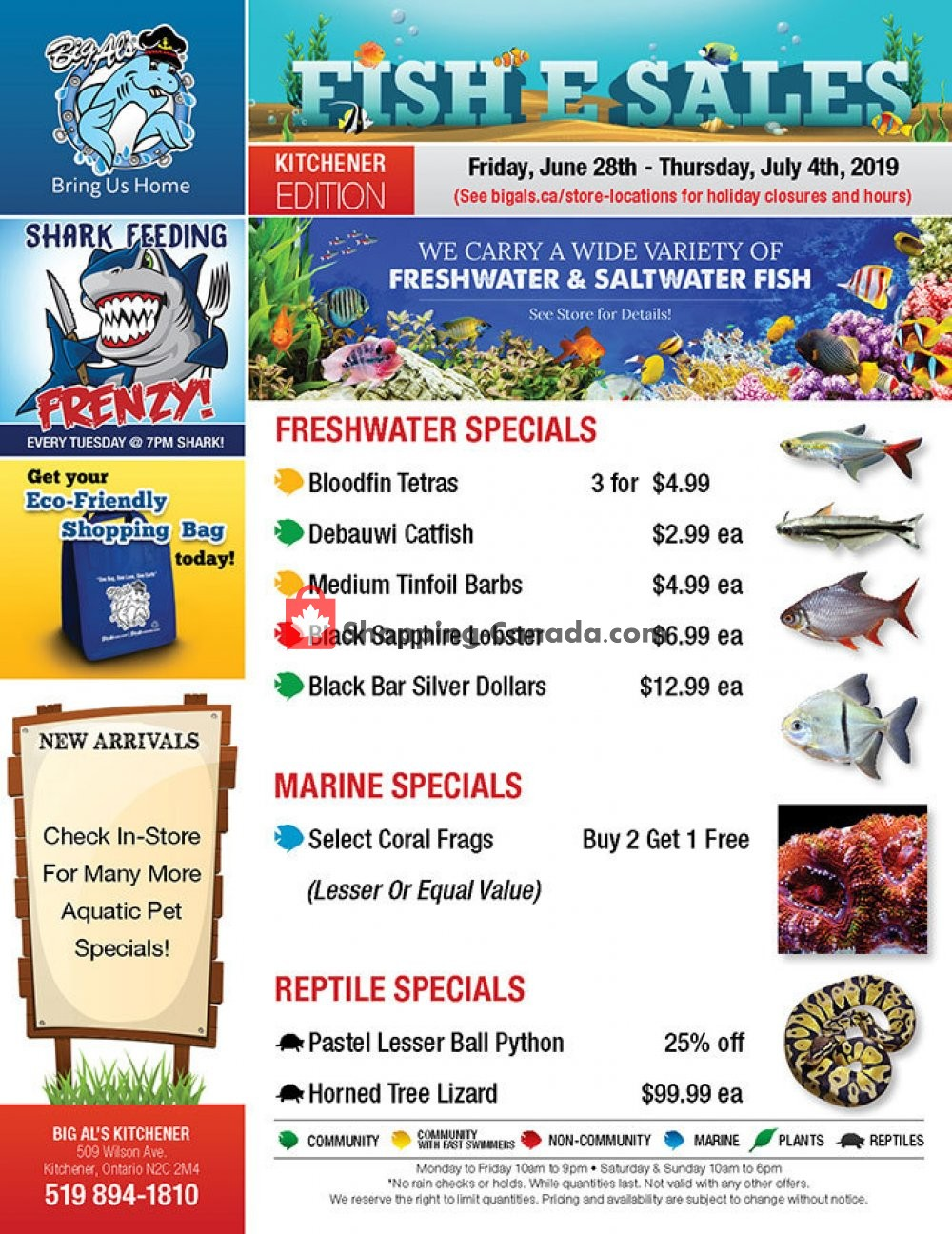 Flyer Big Al's Canada - from Friday June 28, 2019 to Thursday July 4, 2019