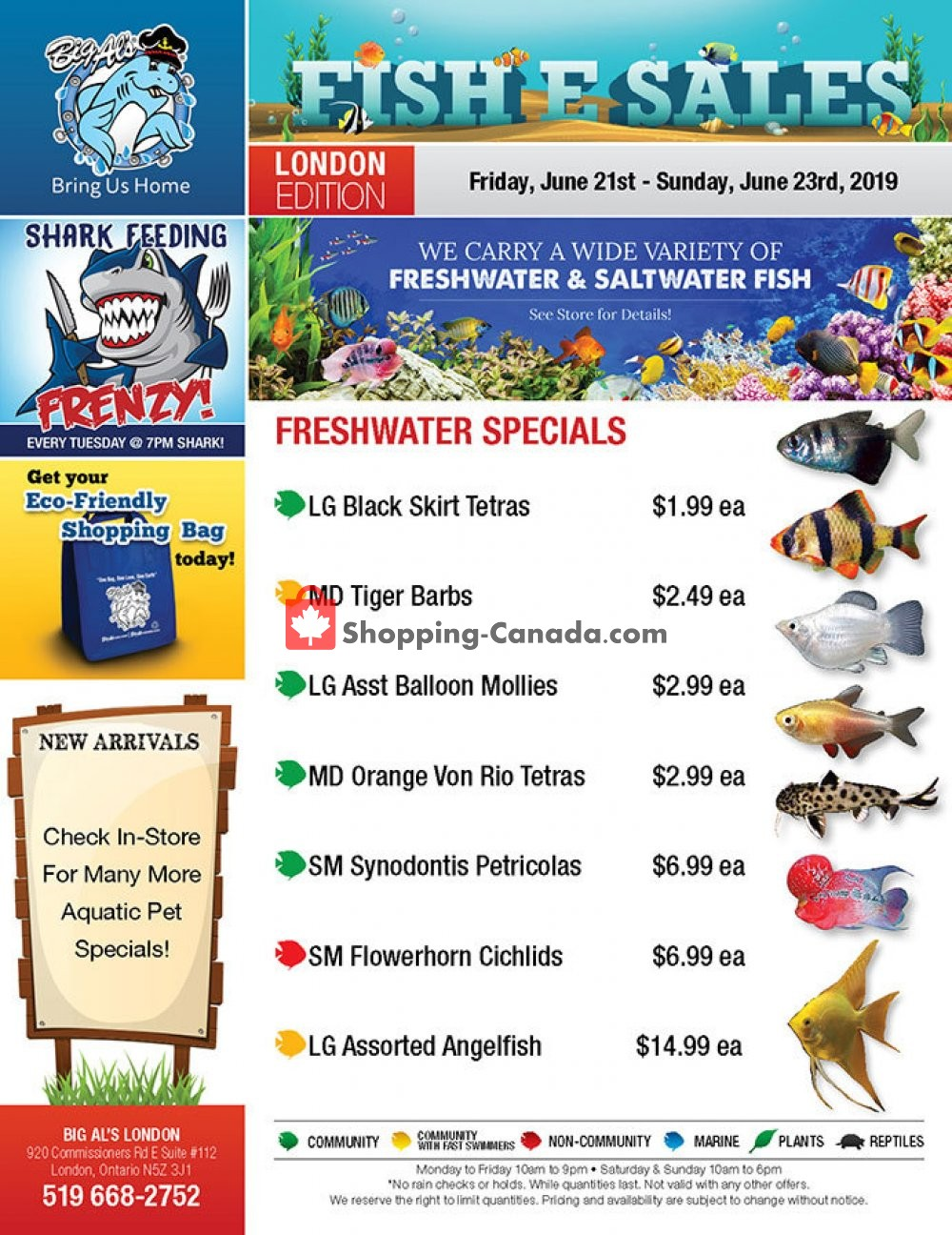Flyer Big Al's Canada - from Friday June 21, 2019 to Sunday June 23, 2019