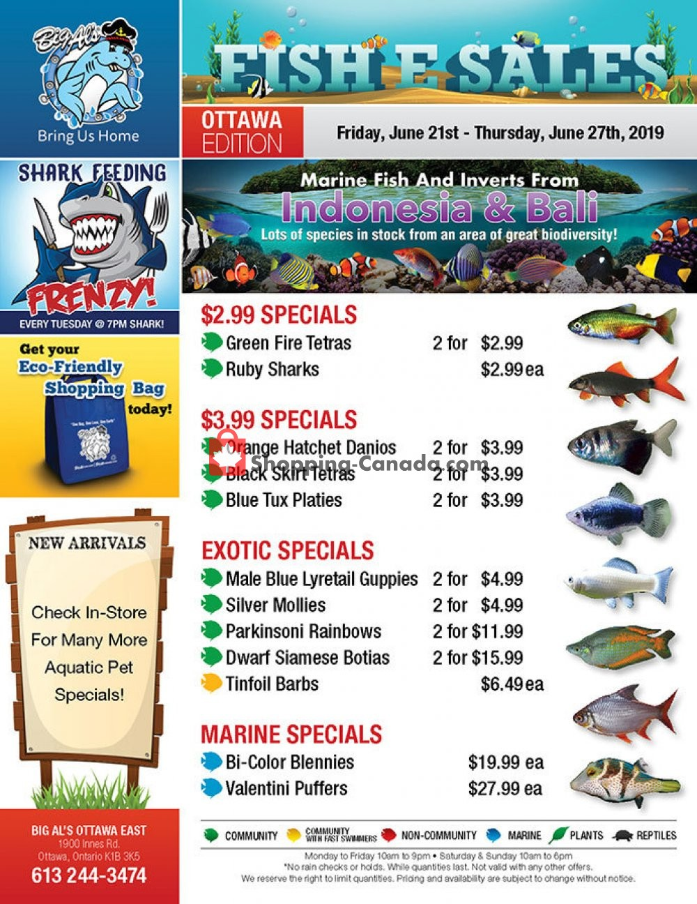 Flyer Big Al's Canada - from Friday June 21, 2019 to Thursday June 27, 2019