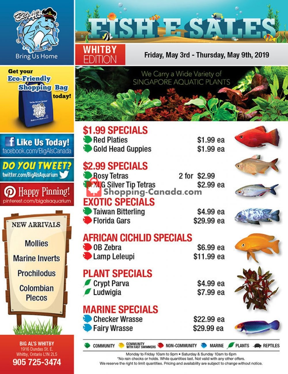 Flyer Big Al's Canada - from Friday May 3, 2019 to Thursday May 9, 2019