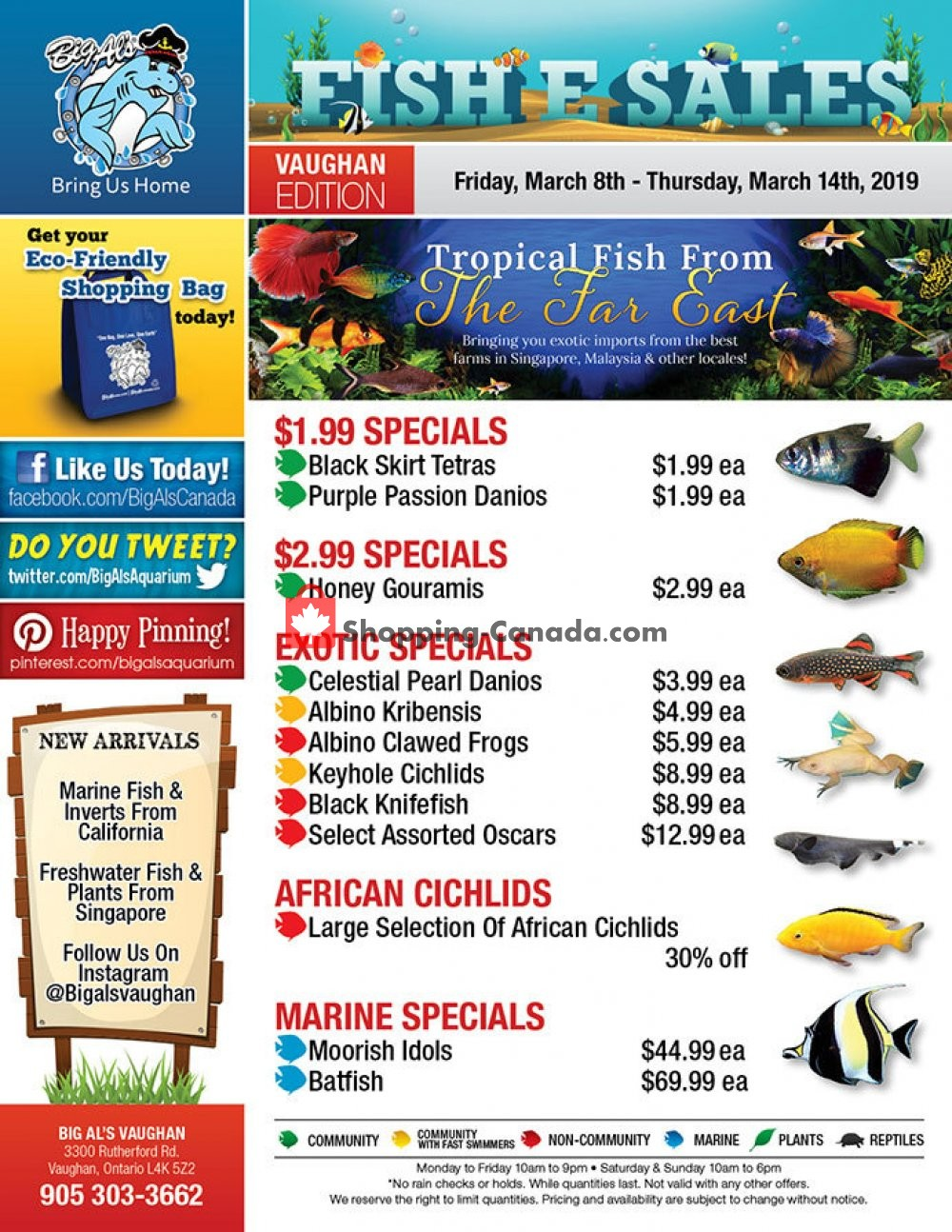 Flyer Big Al's Canada - from Friday March 8, 2019 to Thursday March 14, 2019