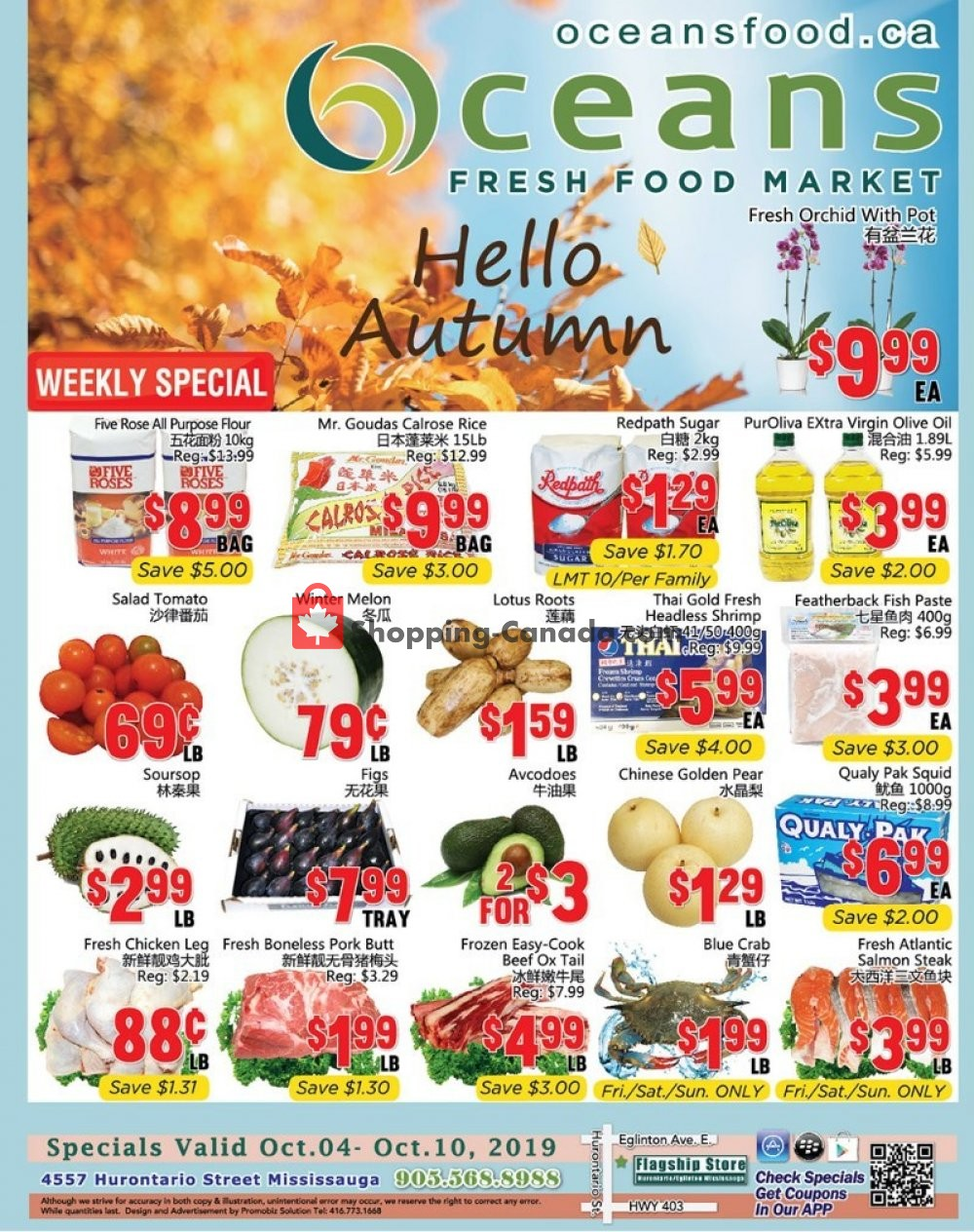 Flyer Oceans Fresh Food Market Canada - from Friday October 4, 2019 to Thursday October 10, 2019