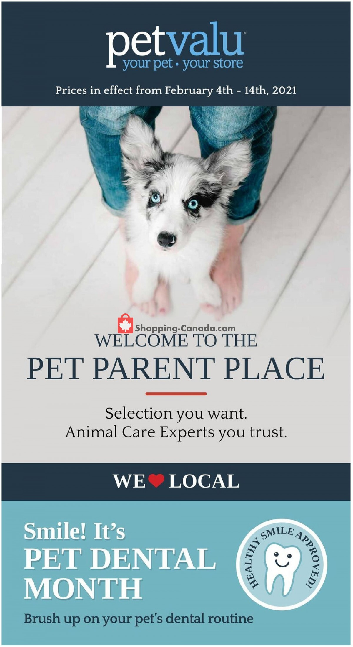 Flyer Pet Valu Canada - from Thursday February 4, 2021 to Sunday February 14, 2021