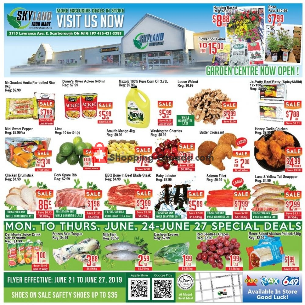 Flyer Skyland Food Mart Canada - from Friday June 21, 2019 to Thursday June 27, 2019