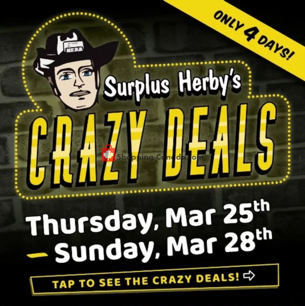 Flyer Surplus Herby's Canada - from Thursday March 25, 2021 to Sunday March 28, 2021