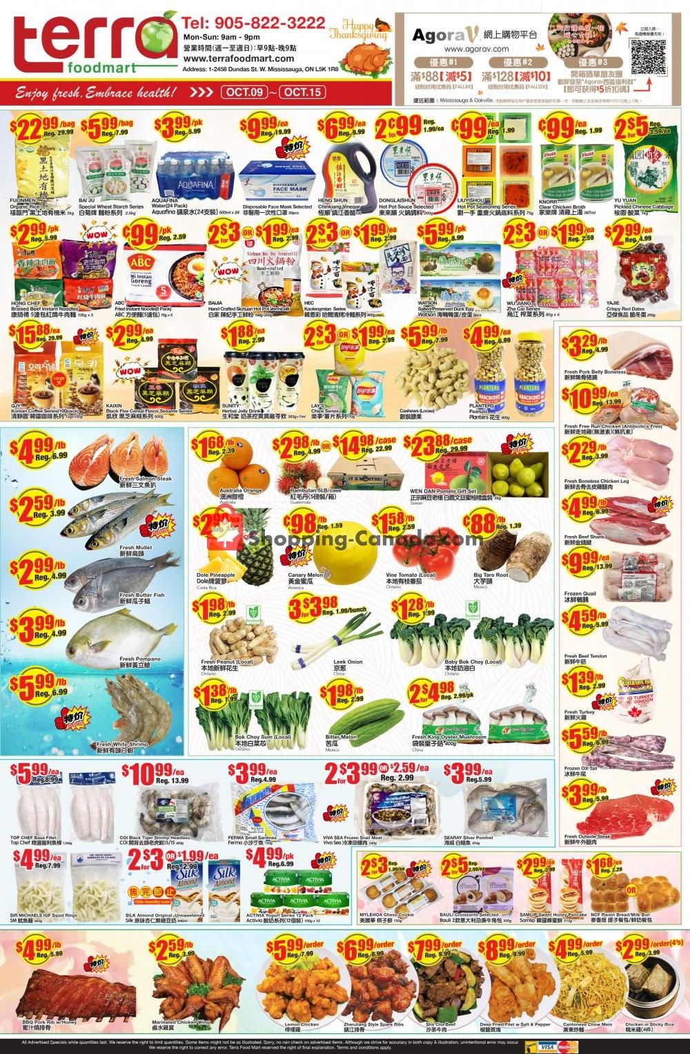 Flyer Terra Foodmart Canada - from Friday October 9, 2020 to Thursday October 15, 2020