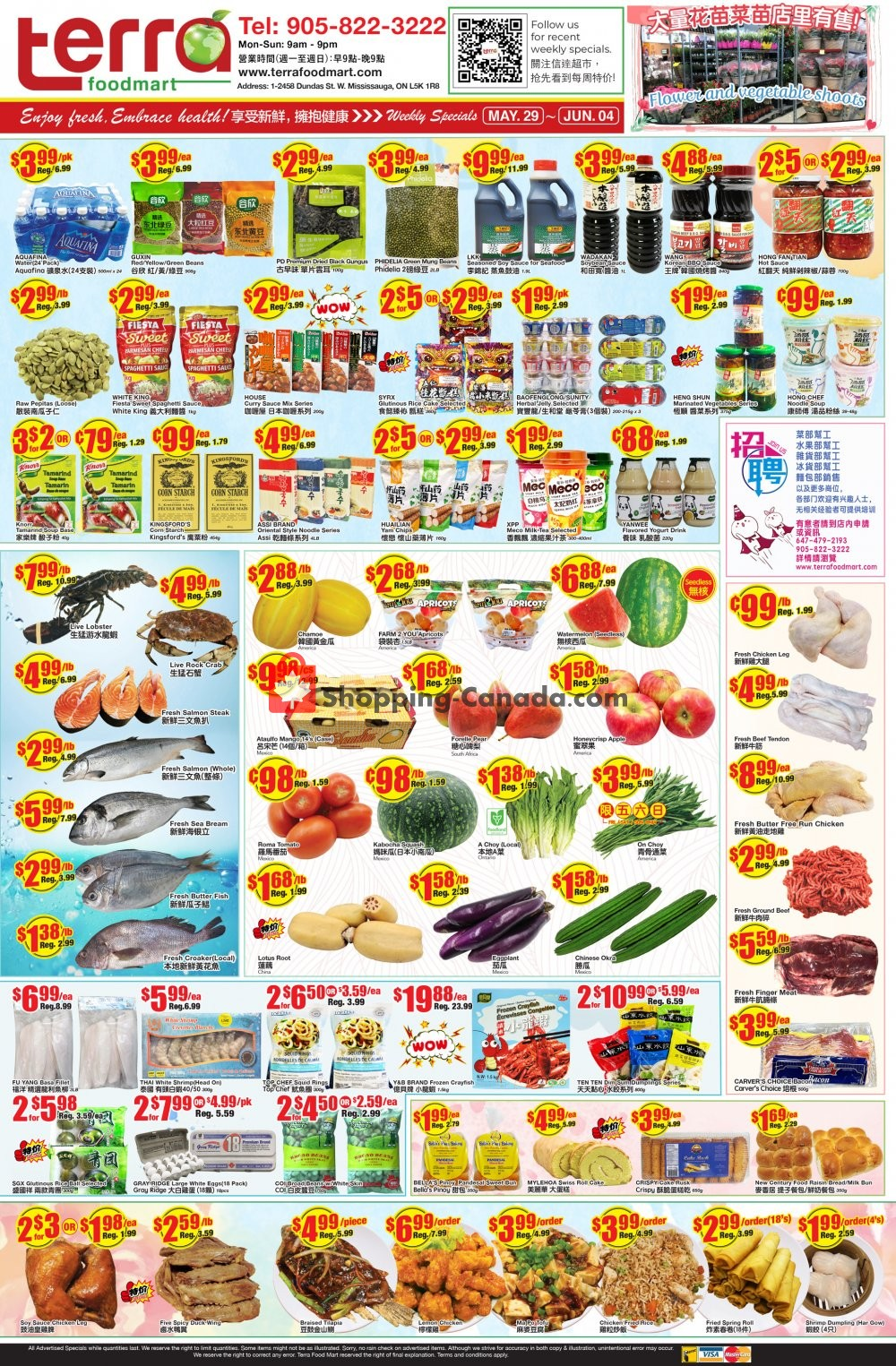 Flyer Terra Foodmart Canada - from Friday May 29, 2020 to Thursday June 4, 2020
