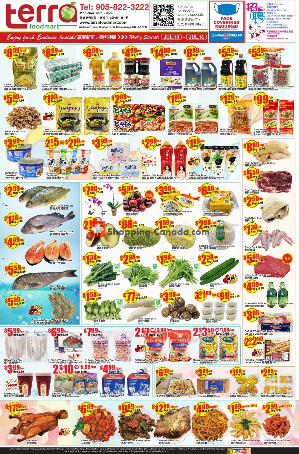 Flyer Terra Foodmart Canada - from Friday July 10, 2020 to Thursday July 16, 2020