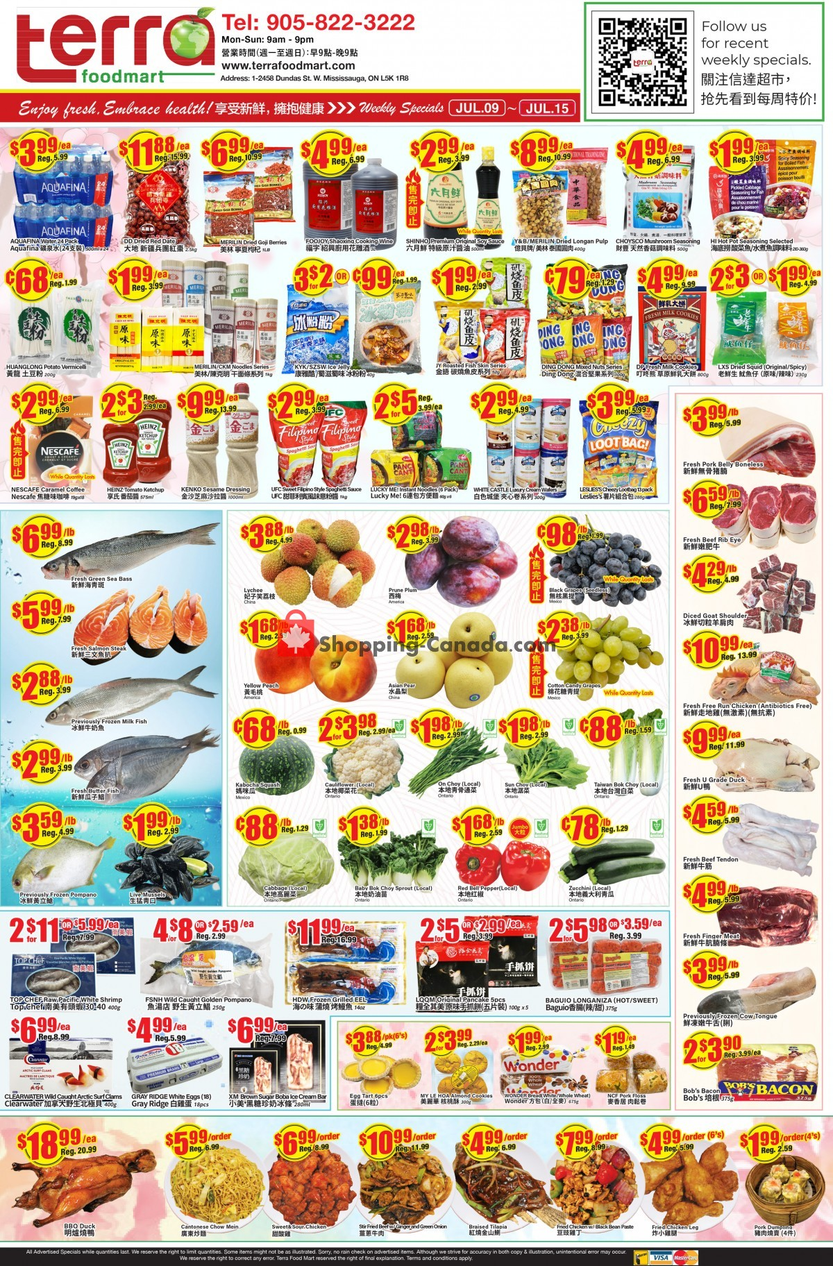 Flyer Terra Foodmart Canada - from Friday July 9, 2021 to Thursday July 15, 2021
