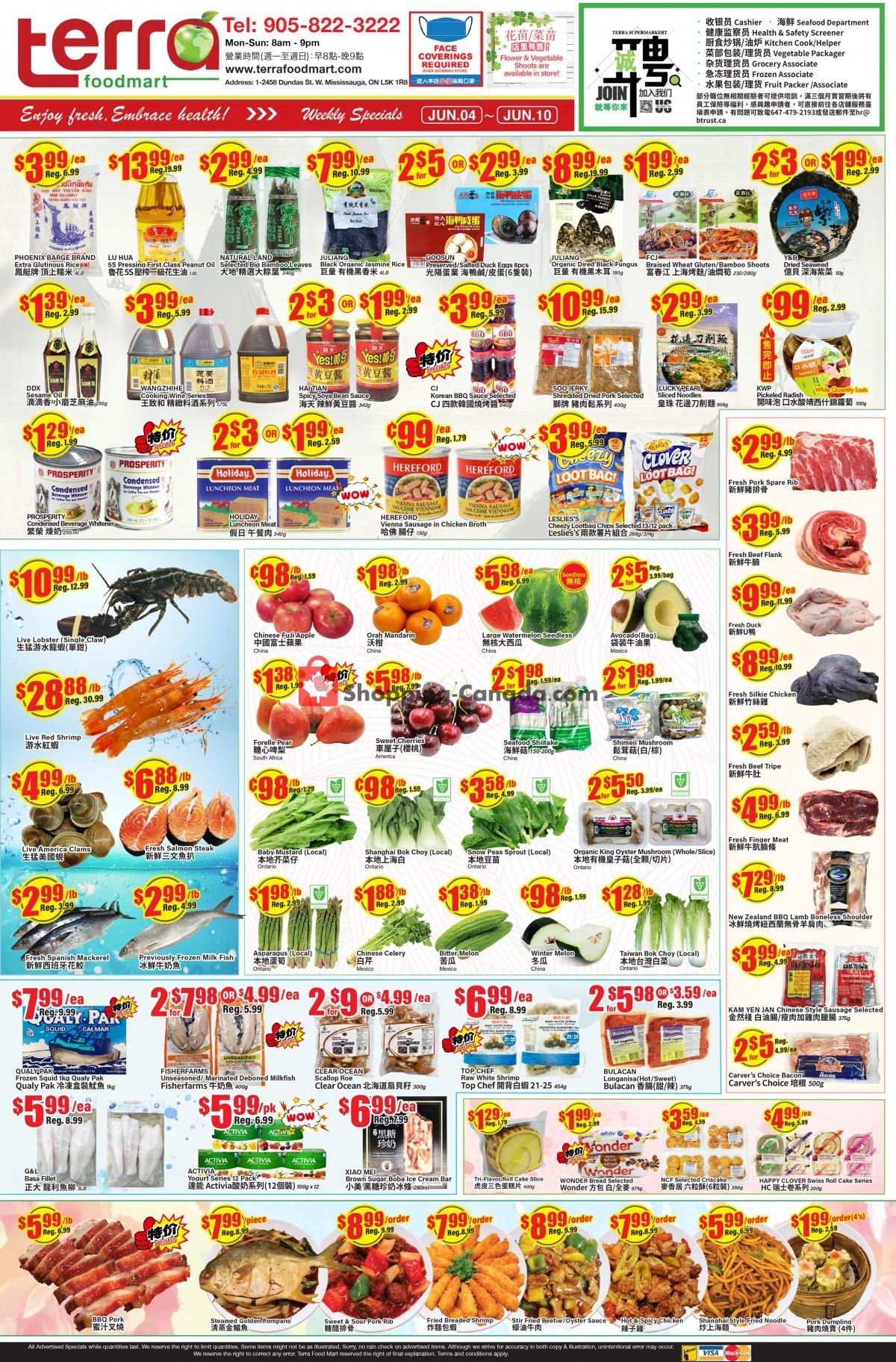Flyer Terra Foodmart Canada - from Friday June 4, 2021 to Thursday June 10, 2021